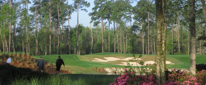South Carolina Golf Packages - Golf In South Carolina